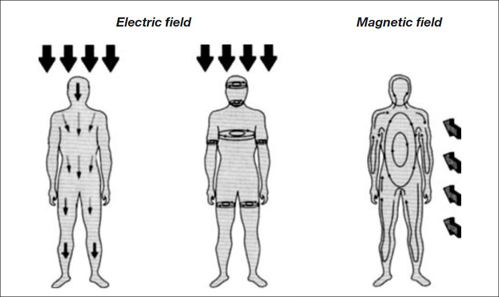 Electromagnetic fields long-term effects